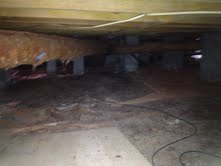 Buying a Foreclosure in Sumter SC Crawl Space Inspection